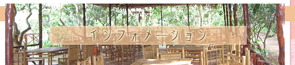 ビーズアクセサリー 手作り雑貨 通販 【 Sanny's Market 】