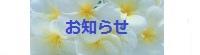 ビーズアクセサリー 手作り雑貨 通販【Sanny's Market】